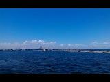 Черное море и чайки - 28.06.13